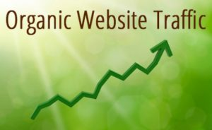 How to optimize search engine to increase organic traffic