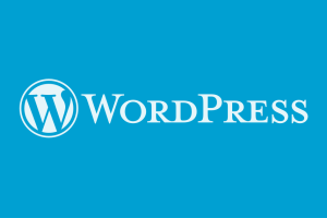 4 Important Things Every WordPress User Should Know About