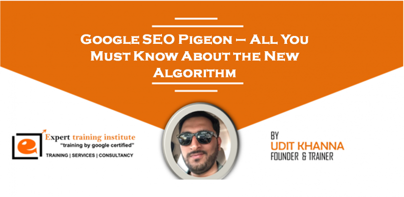 Google SEO Pigeon – All You Must Know About the New Algorithm