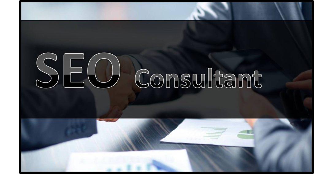 SEO Consultant in delhi