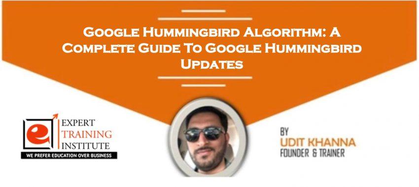 Google Hummingbird Algorithm: A Complete Guide To Google Hummingbird Updates