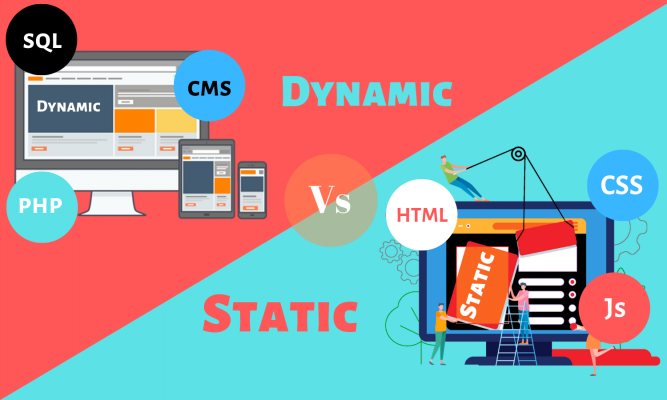 What Is Website Design? Static & Dynamic Explained