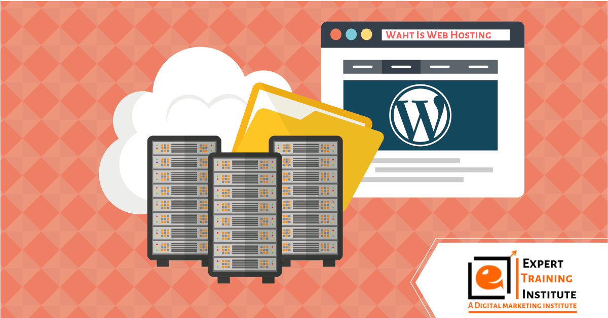 What Is Web Hosting? Why You Need Hosting For Wordpress?