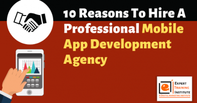 10 Reasons To Hire A Professional Mobile App Development Agency